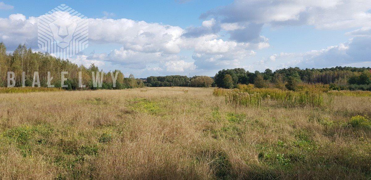 Działka rolna na sprzedaż Sułkowice  102100m2 Foto 3