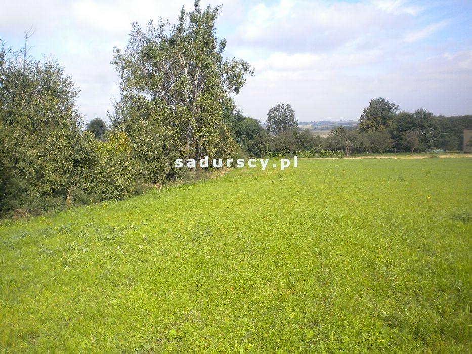 Działka rolna na sprzedaż Gołyszyn  28520m2 Foto 1
