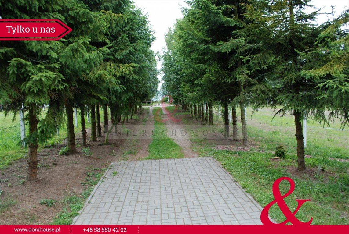 Lokal użytkowy na sprzedaż Mirowo Duże  420m2 Foto 6