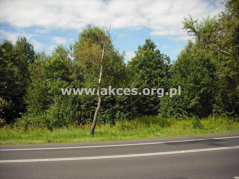 Działka leśna na sprzedaż Warszawa, Wesoła, Pohulanka  29964m2 Foto 3