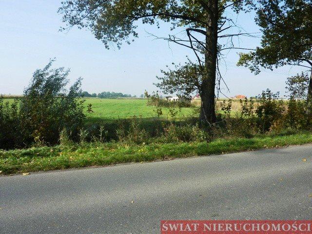 Działka siedliskowa na sprzedaż Żerniki Wrocławskie  9555m2 Foto 2