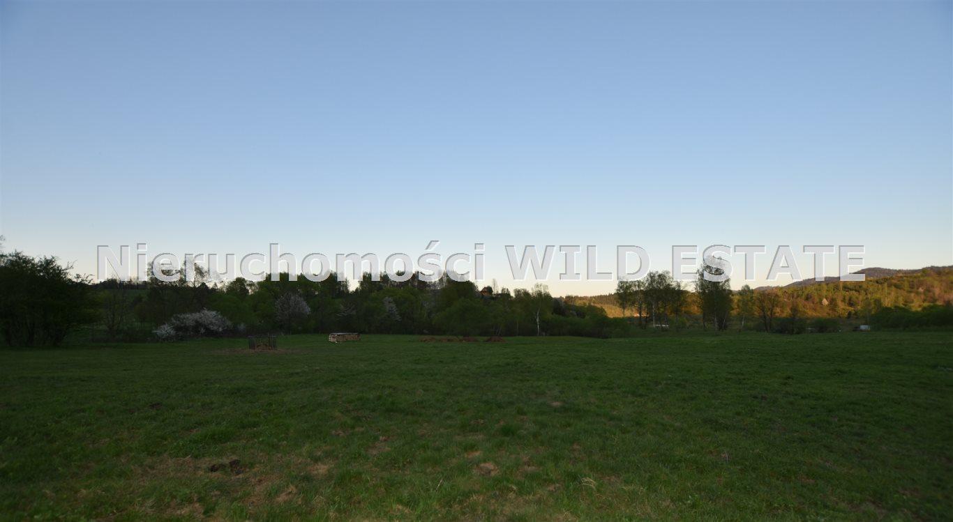 Działka rolna na sprzedaż Solina, Rajskie  10000m2 Foto 3
