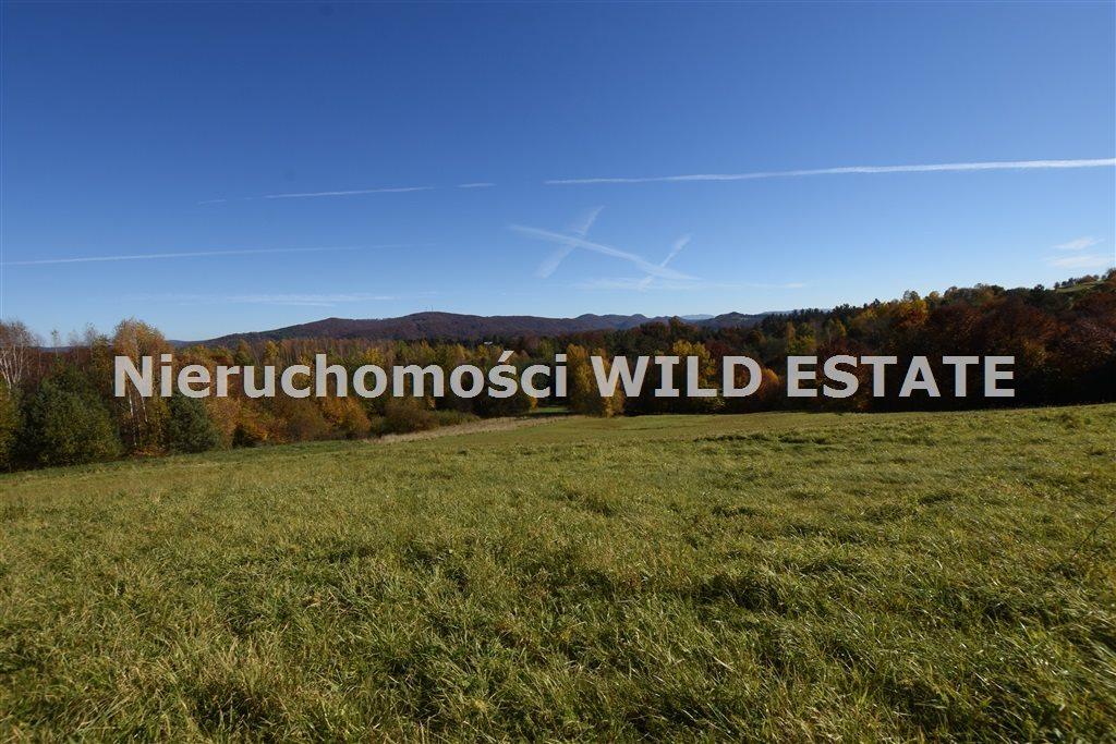 Działka rolna na sprzedaż Solina, Polańczyk  5790m2 Foto 6