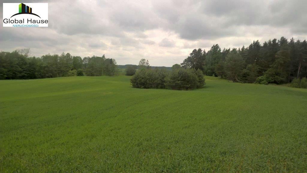 Działka rolna na sprzedaż Nowe Krzywe  3080m2 Foto 2