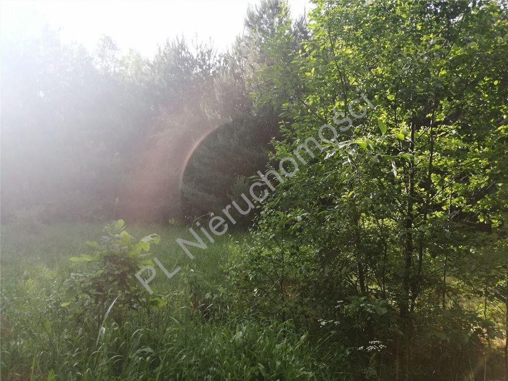 Działka budowlana na sprzedaż Grabina  1000m2 Foto 2