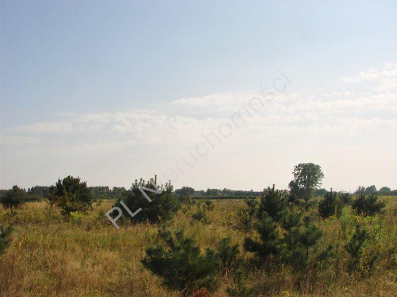 Działka budowlana na sprzedaż Żelechów  1596m2 Foto 5