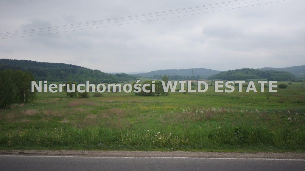 Działka budowlana na sprzedaż Olszanica, Uherce Mineralne  2500m2 Foto 4