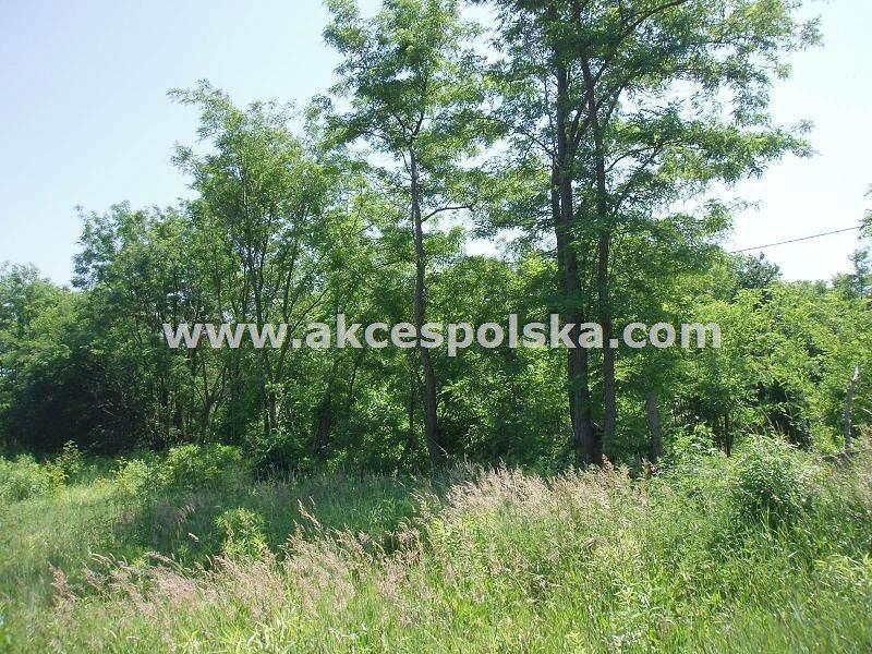 Działka budowlana na sprzedaż Zakroczym, Gałachy  1000m2 Foto 1