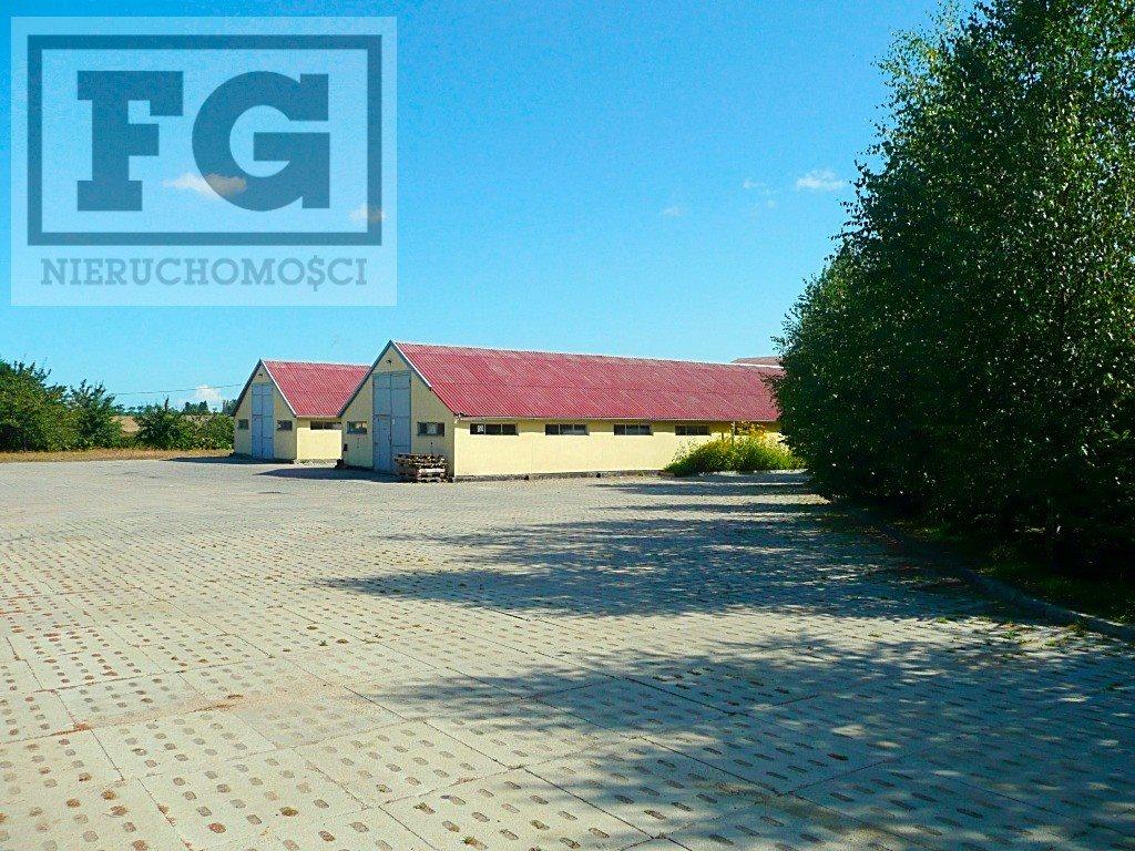 Lokal użytkowy na sprzedaż Gdańsk, Juszkowo, Cisowa  500m2 Foto 5