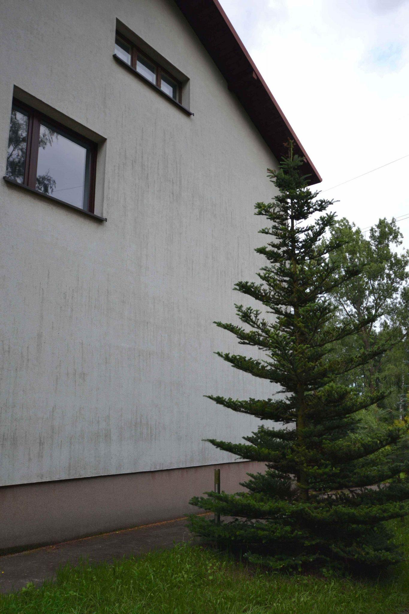 Mieszkanie czteropokojowe  na wynajem Częstochowa, Błeszno  105m2 Foto 6