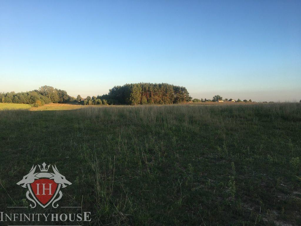 Działka rolna na sprzedaż Jaskółowo  56700m2 Foto 10