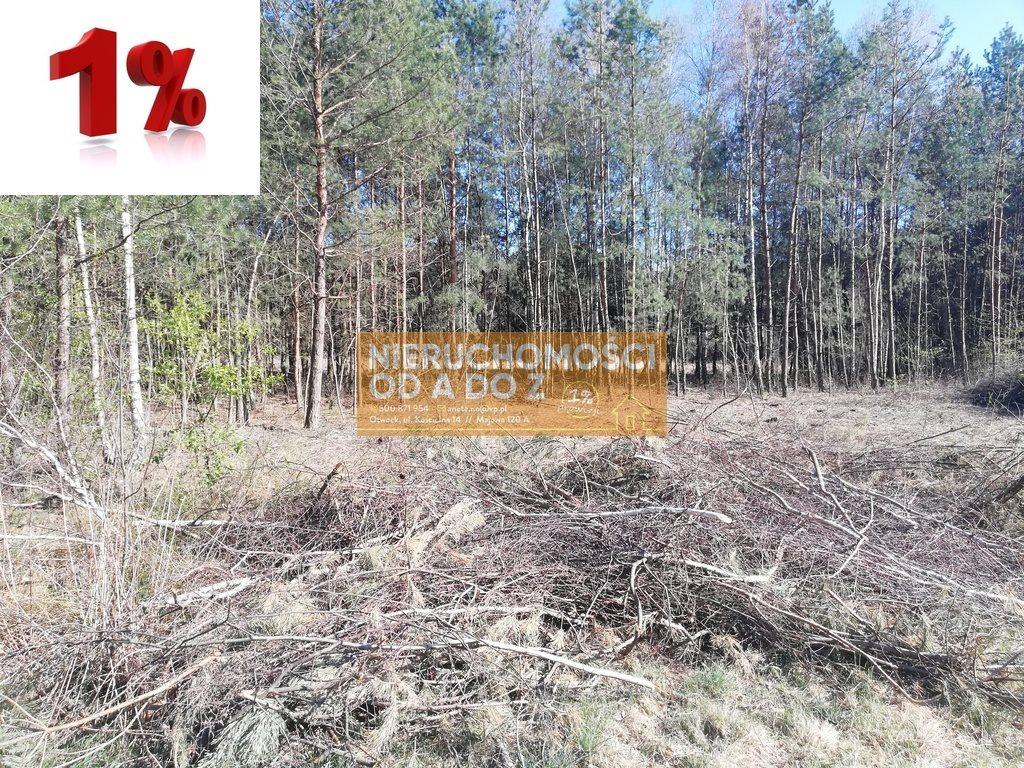 Działka leśna na sprzedaż Kołbiel  4900m2 Foto 1