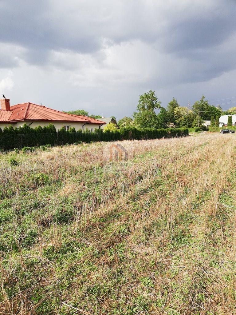 Działka budowlana na sprzedaż Krępiec  3100m2 Foto 1