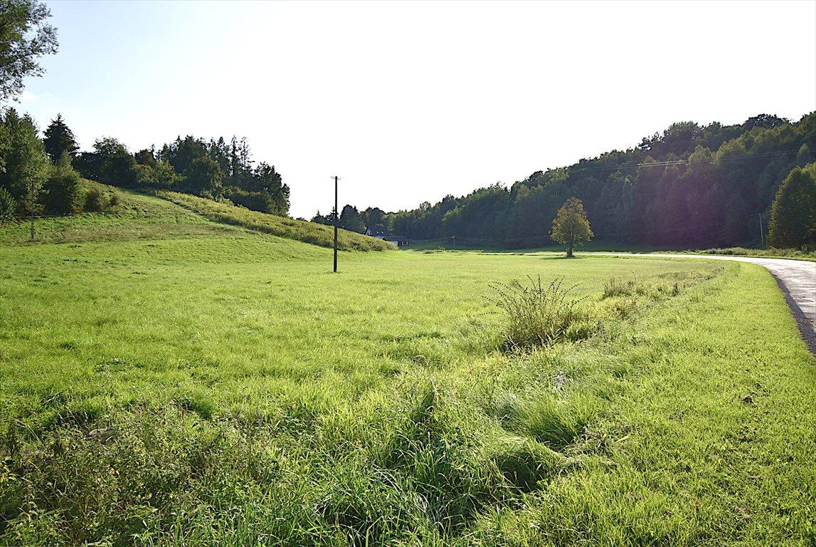 Działka rolna na sprzedaż Kazimierz Dolny  10000m2 Foto 1