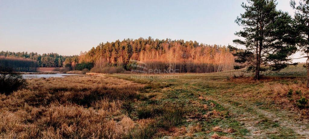 Działka leśna na sprzedaż Samagowo  26558m2 Foto 6
