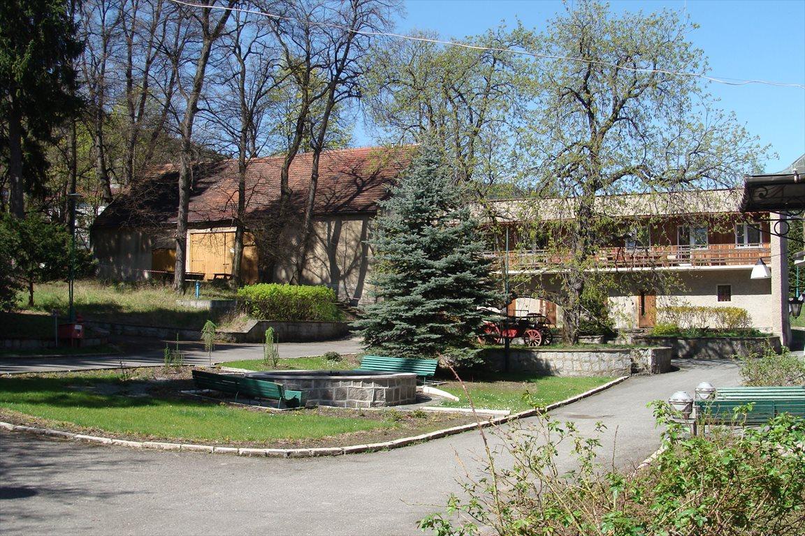 Dom na sprzedaż Pieszyce, Rościszów 71  1568m2 Foto 5