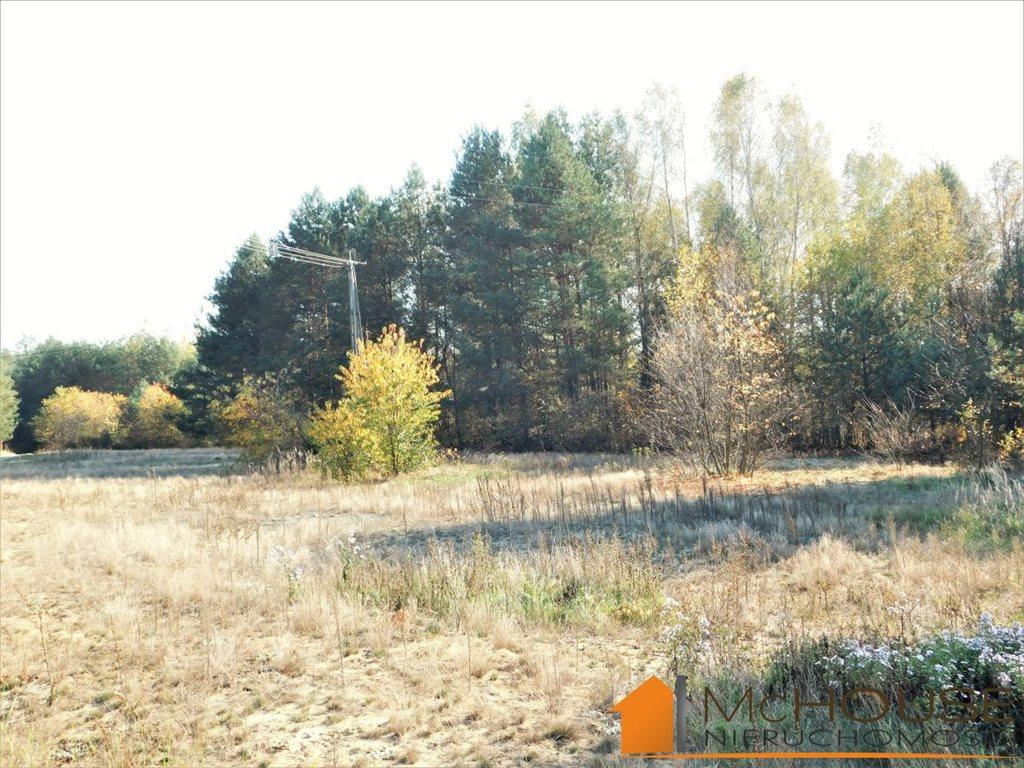 Działka rolna na sprzedaż Huta Komorowska, Huta Komorowska  5350m2 Foto 5