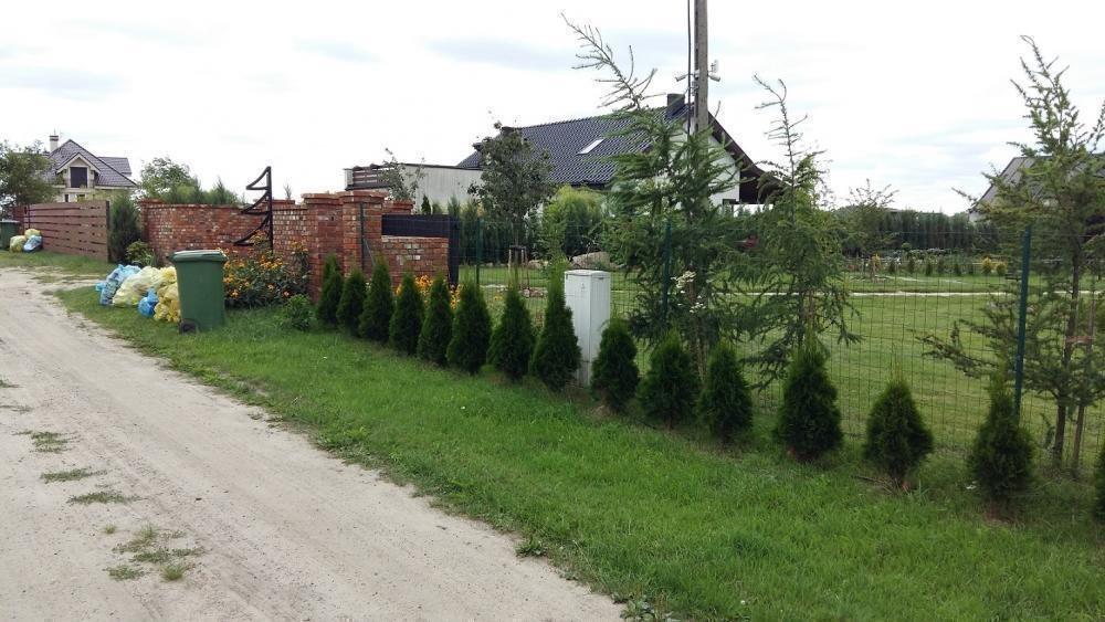 Działka inna na sprzedaż Grzebienisko, Huby  1250m2 Foto 4