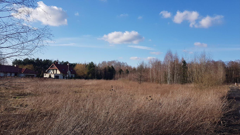 Działka budowlana na sprzedaż Michałówek  3349m2 Foto 1