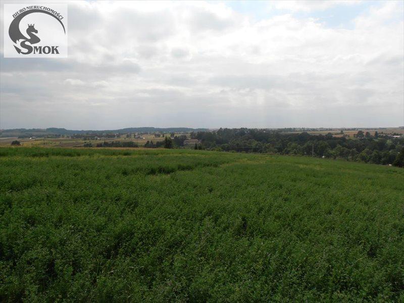 Działka rolna na sprzedaż Minoga  10695m2 Foto 1