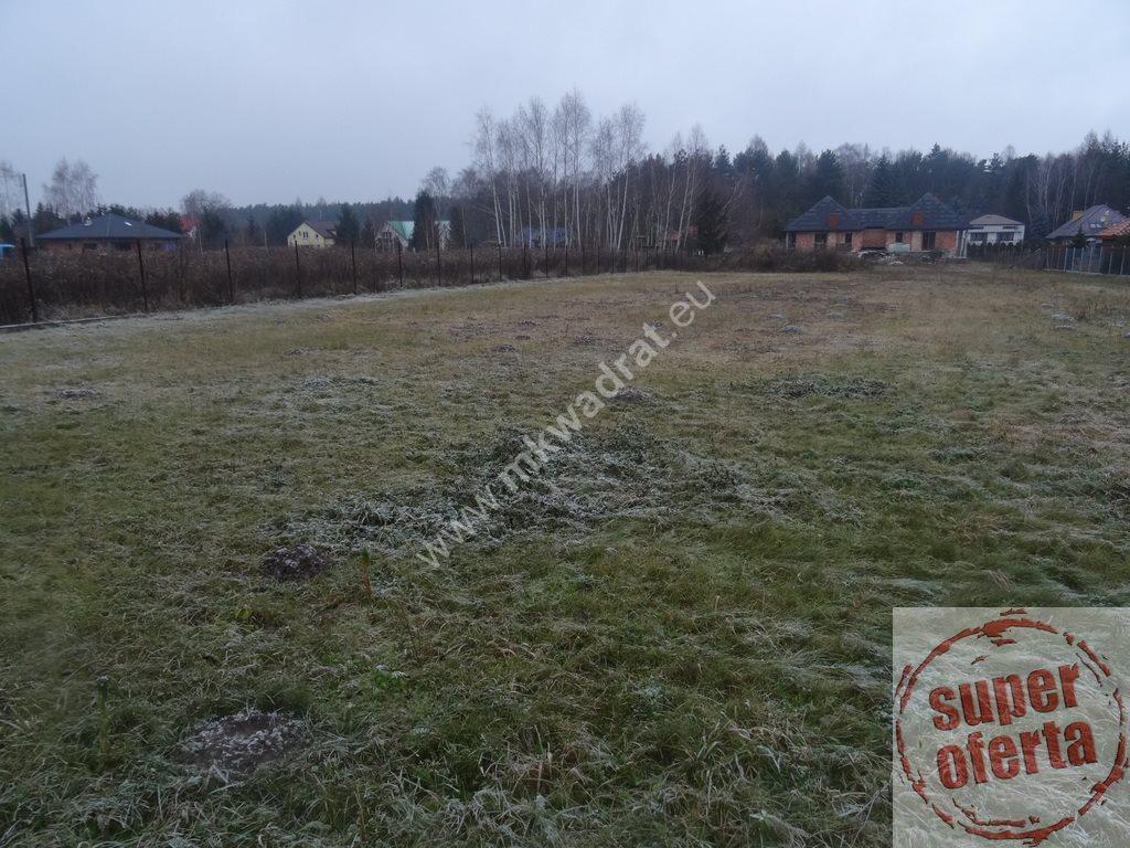 Dom na sprzedaż Łoś, Oferta wyłączna M Kwadrat - kontakt 515 200 031  600m2 Foto 12