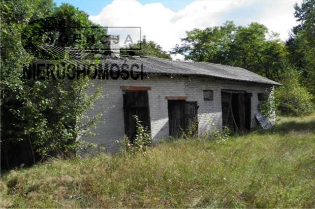 Działka budowlana na sprzedaż Chobot  2600m2 Foto 4