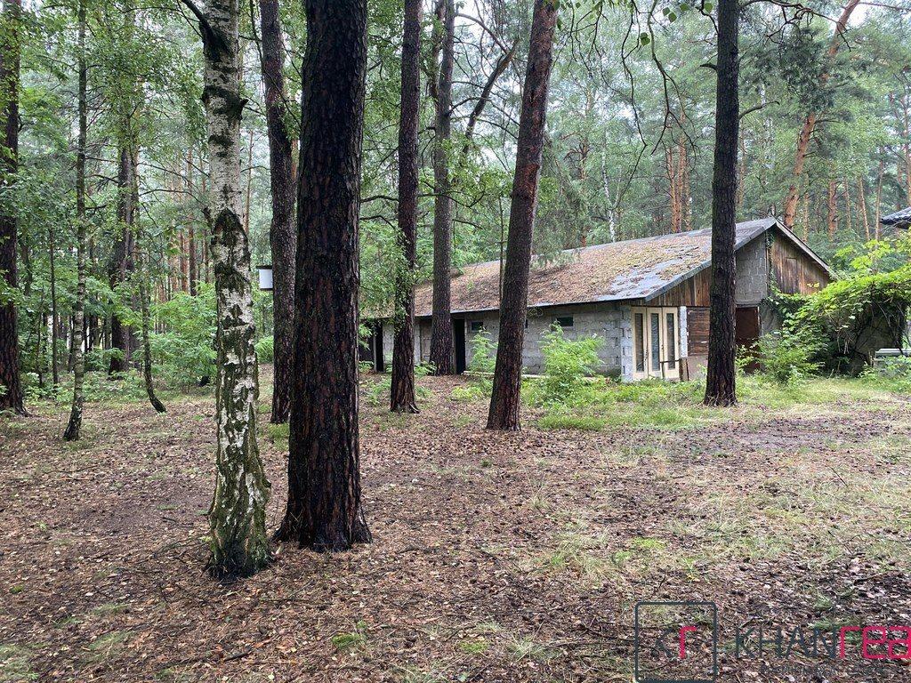 Działka leśna z prawem budowy na sprzedaż Józefów  2860m2 Foto 2