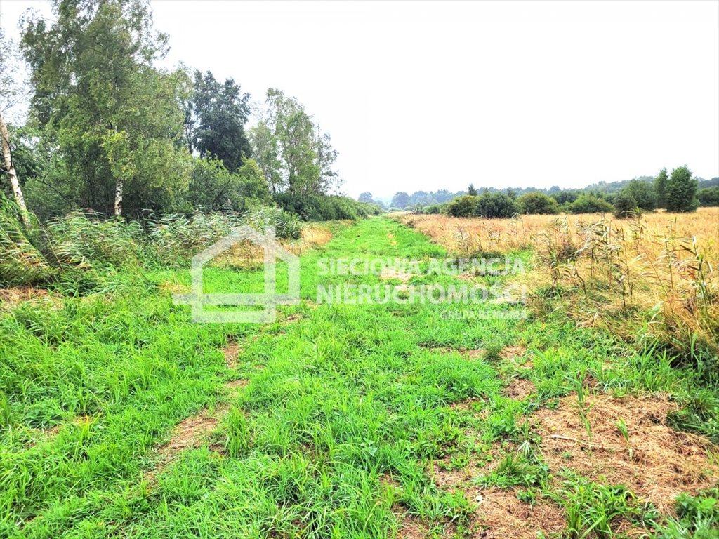 Działka rolna na sprzedaż Sasino  38600m2 Foto 1