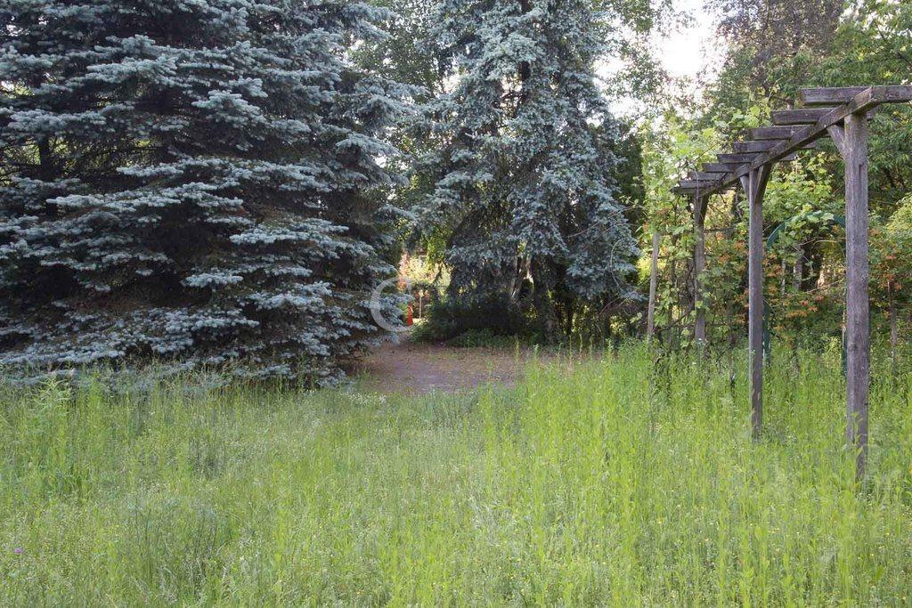 Działka budowlana na sprzedaż Piaseczno, Zaleśna  1600m2 Foto 2