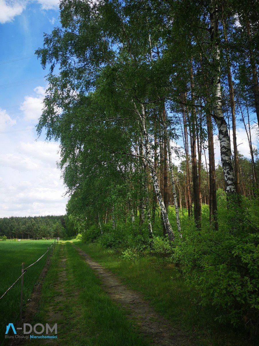 Działka rolna na sprzedaż Podlesie  100000m2 Foto 3