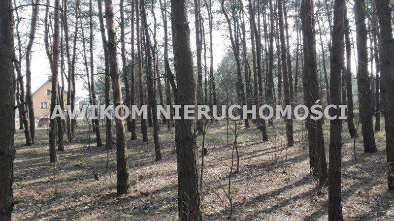 Działka leśna na sprzedaż Skierniewice  8837m2 Foto 2