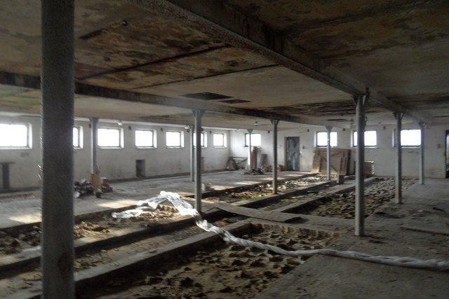 Działka budowlana na sprzedaż Olsza  12000m2 Foto 5