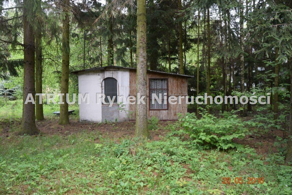 Działka budowlana na sprzedaż Głowno  3384m2 Foto 3