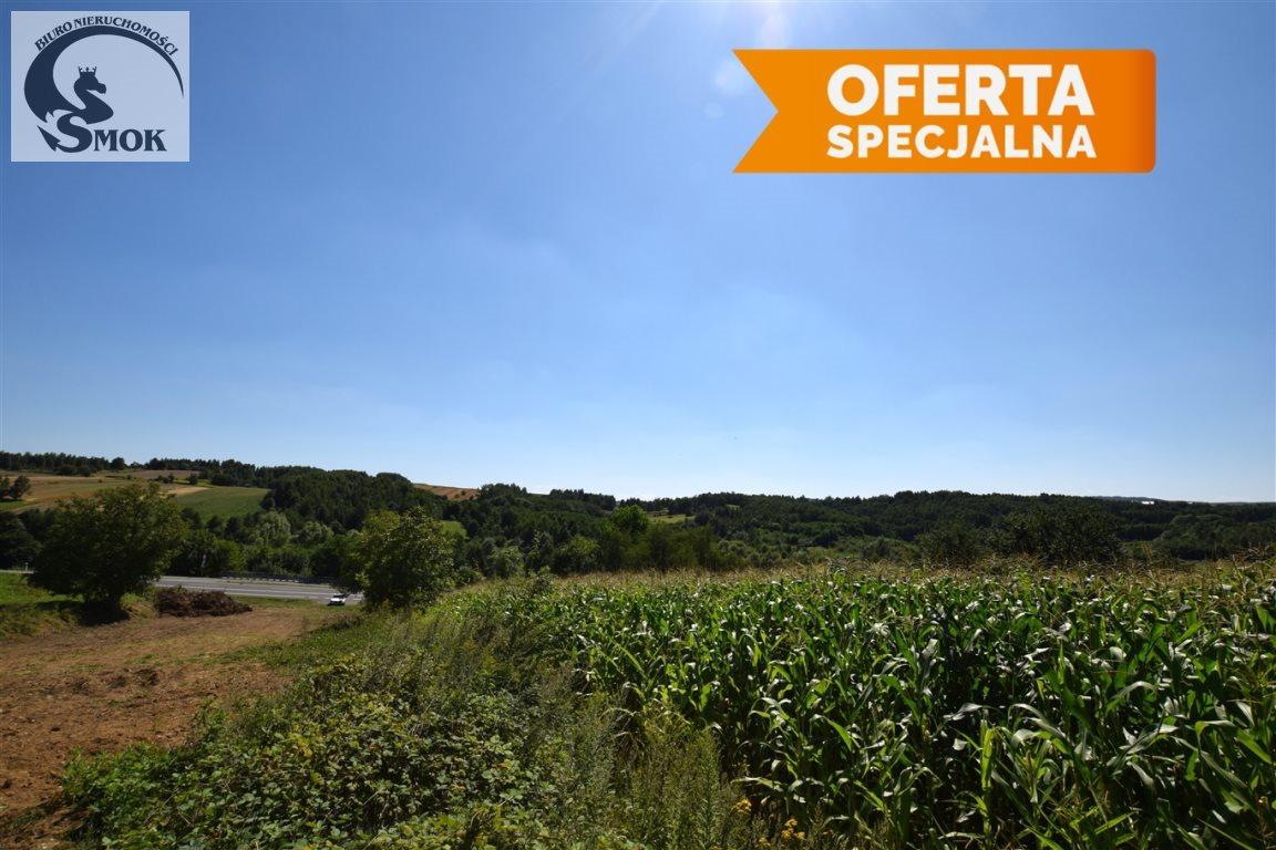 Działka rolna na sprzedaż Bodzanów  4400m2 Foto 1