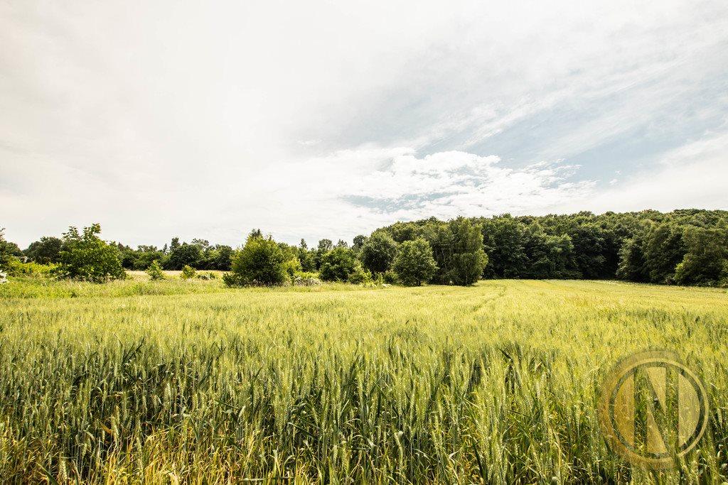 Działka rolna na sprzedaż Kraków, Wola Justowska, Wola Justowska  3396m2 Foto 2