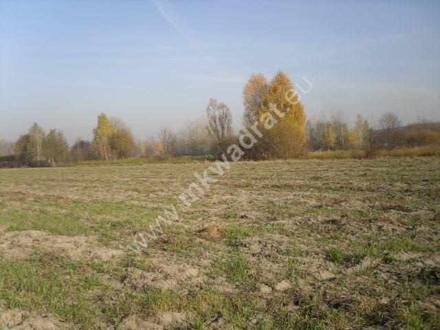Działka komercyjna na sprzedaż Pęcice, Wąska  9800m2 Foto 2