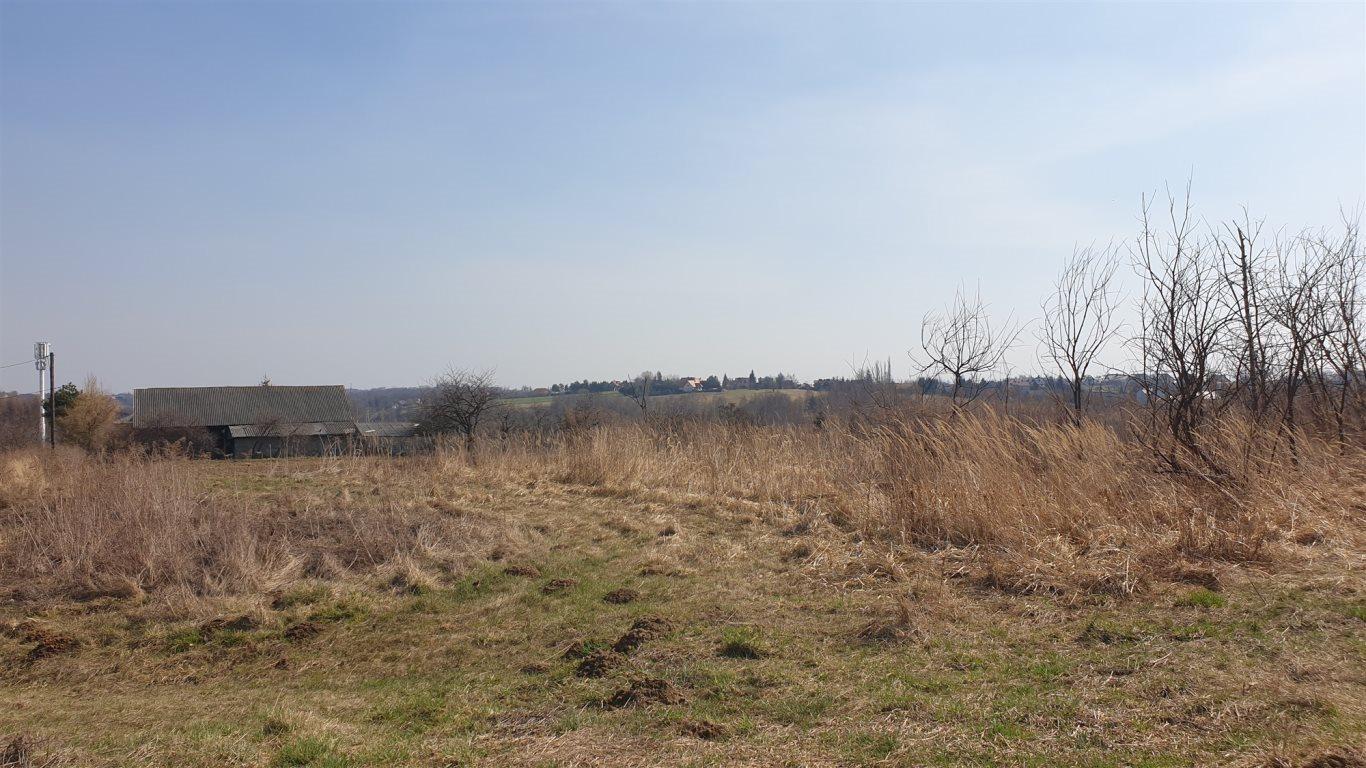 Działka rolna na sprzedaż Wierzchowie  4900m2 Foto 2