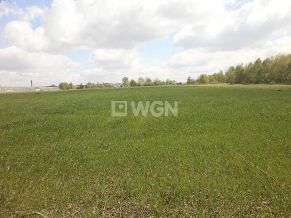 Działka rolna na sprzedaż Czarny Las, Częstochowska  23000m2 Foto 3