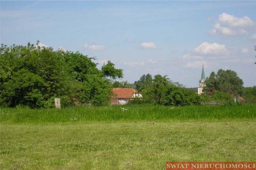 Działka budowlana na sprzedaż Kałkowskie  3600m2 Foto 1