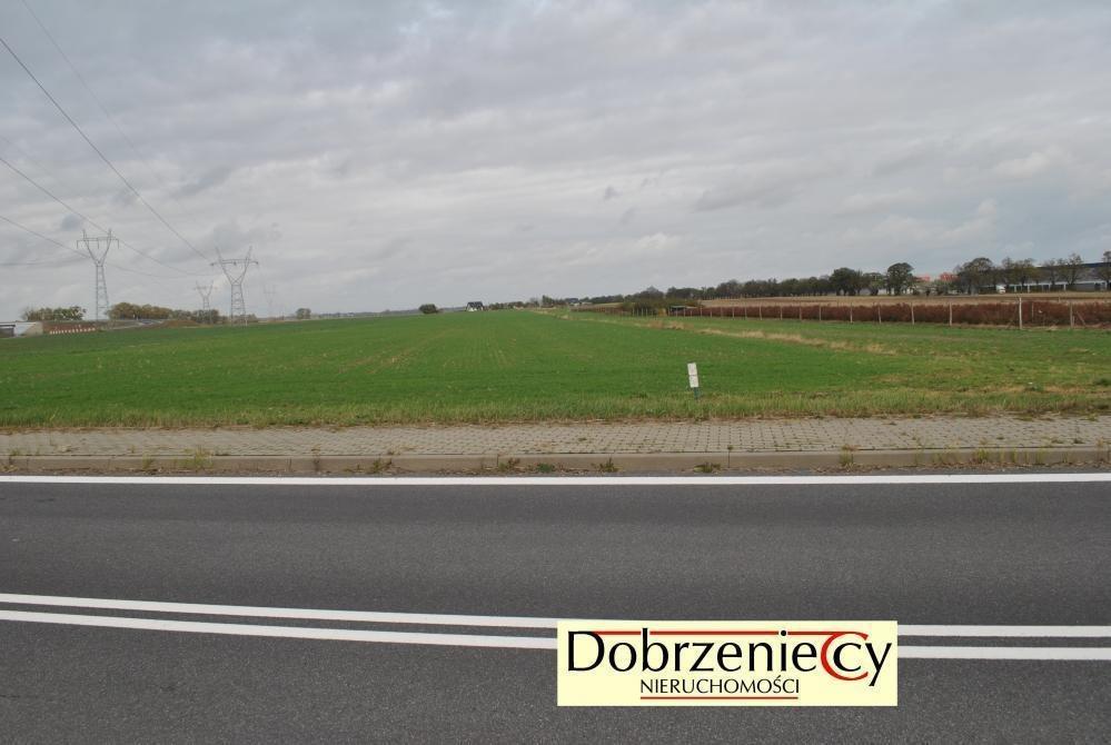 Działka inna pod dzierżawę Swadzim, Poznańska  8500m2 Foto 1