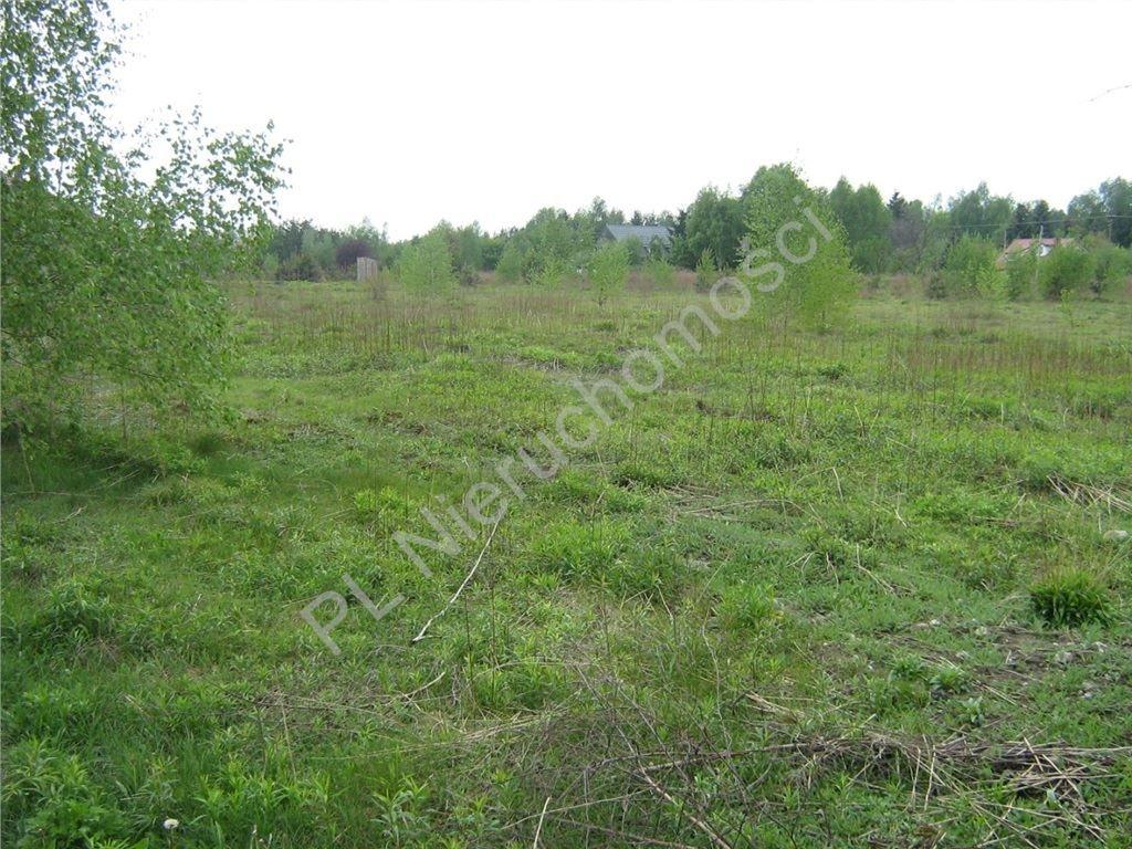 Działka inwestycyjna na sprzedaż Chrzanów Duży  6397m2 Foto 2