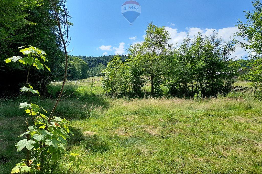 Działka siedliskowa na sprzedaż Grzechynia  1600m2 Foto 4