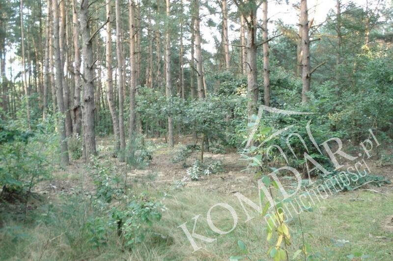 Działka budowlana na sprzedaż Józefów, Józefów  2000m2 Foto 1