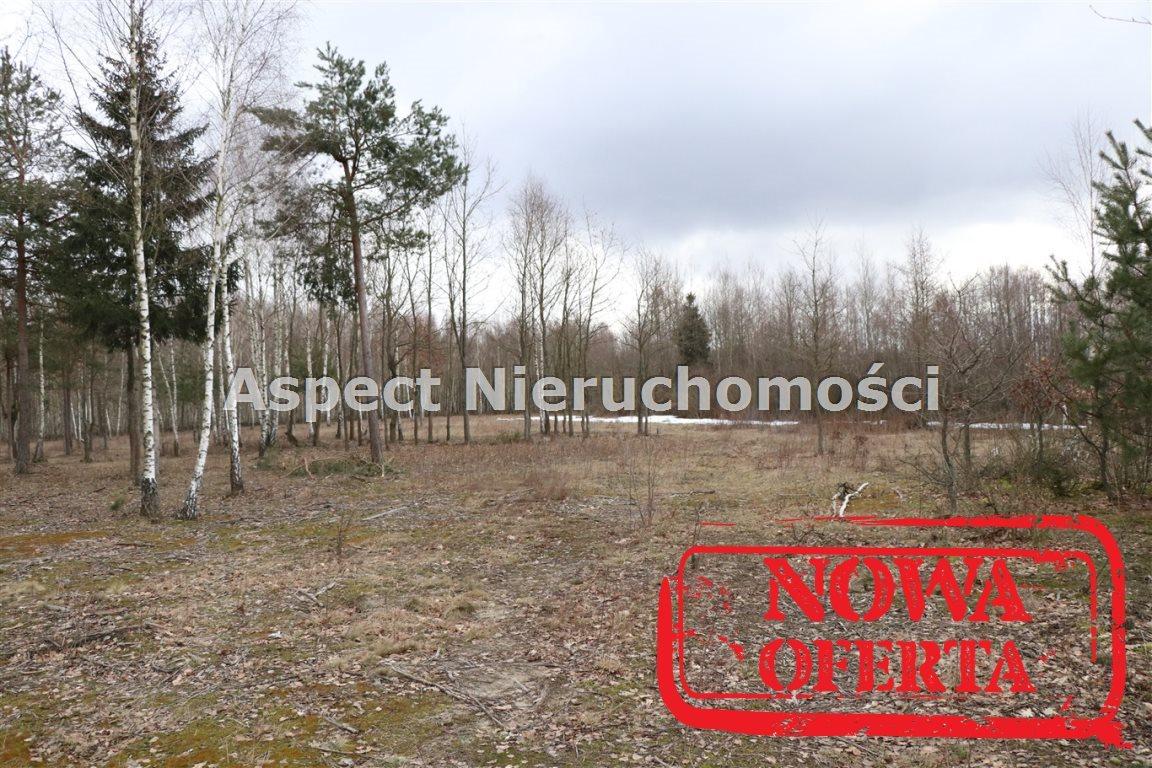 Działka rolna na sprzedaż Białystok, Juchnowiec Kościelny, Hołówki Duże.  10900m2 Foto 2