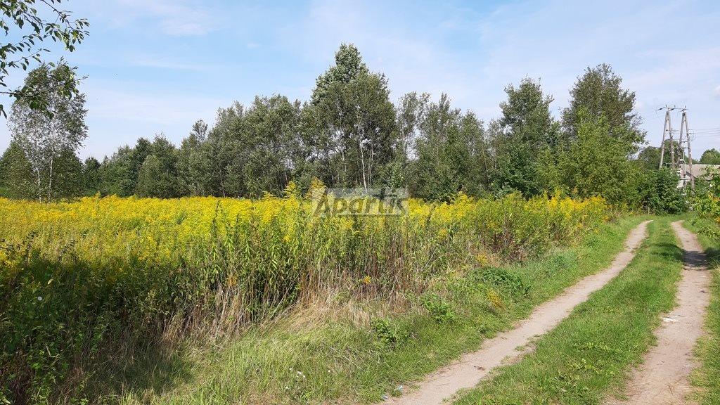Działka rolna na sprzedaż Budziska  8229m2 Foto 5