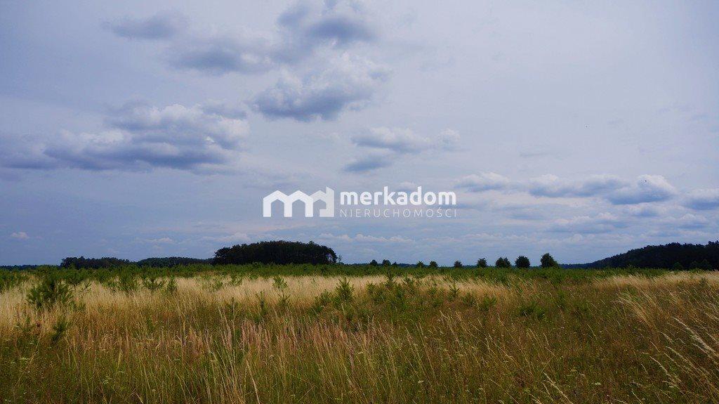 Działka rolna na sprzedaż Grzybowo  21116m2 Foto 8