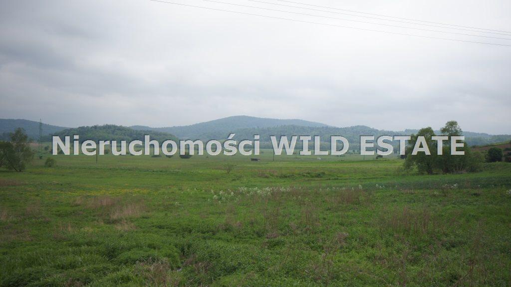 Działka budowlana na sprzedaż Olszanica, Uherce Mineralne  2500m2 Foto 5
