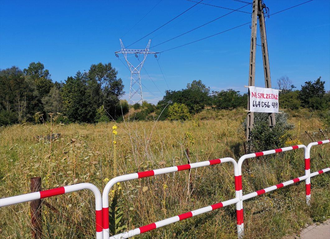 Działka inwestycyjna na sprzedaż Poznań, Naramowice, Naramowicka  2411m2 Foto 2
