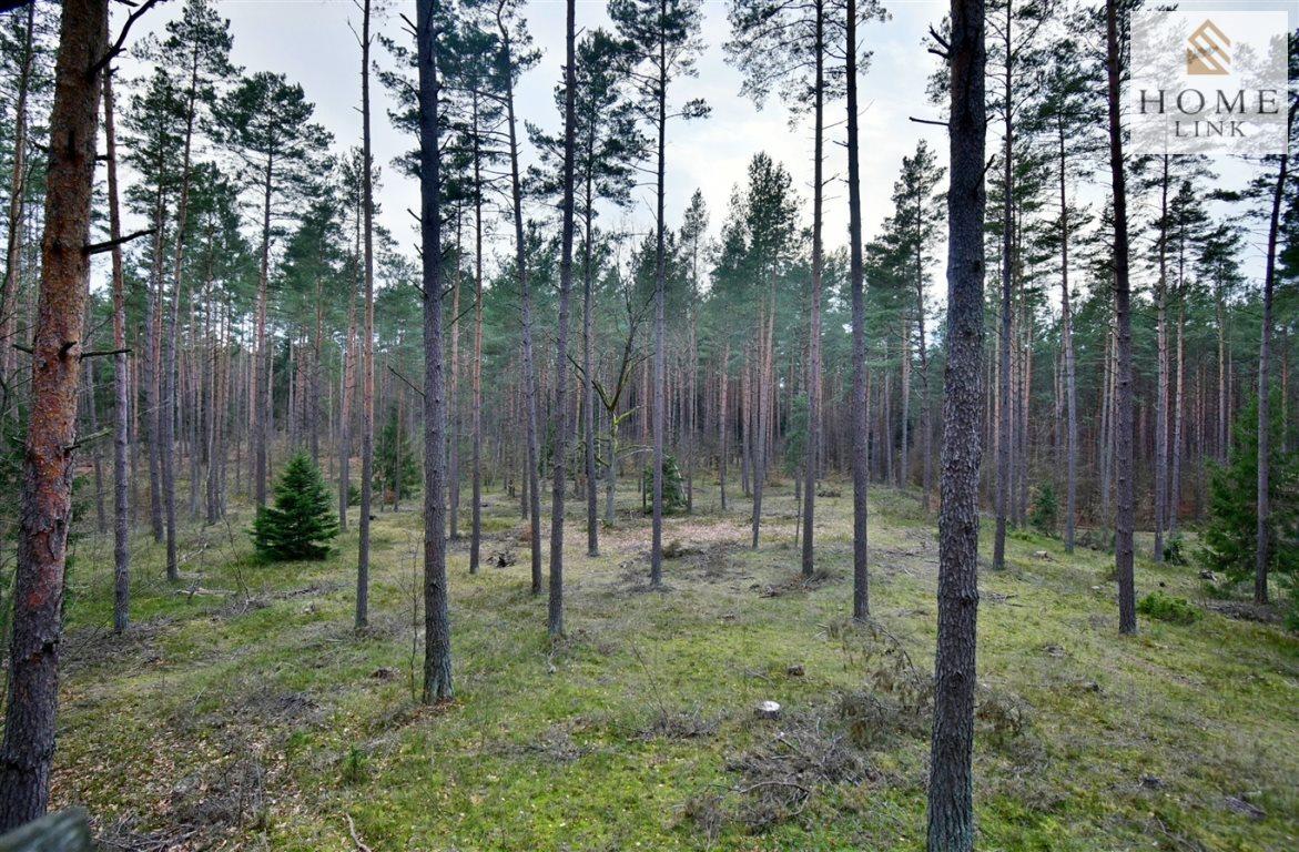 Działka leśna na sprzedaż Warkały  47800m2 Foto 8
