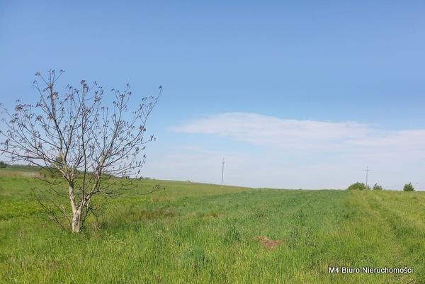 Działka rolna na sprzedaż Żeglce  15500m2 Foto 2